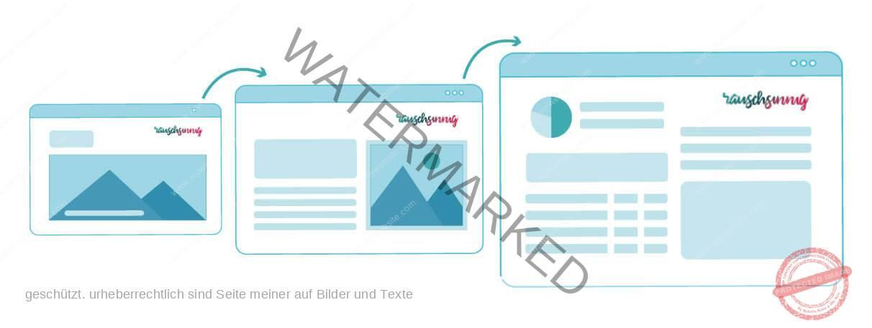 Praesentationen-für-online-Vor-ort-und-Pitch-Infografik